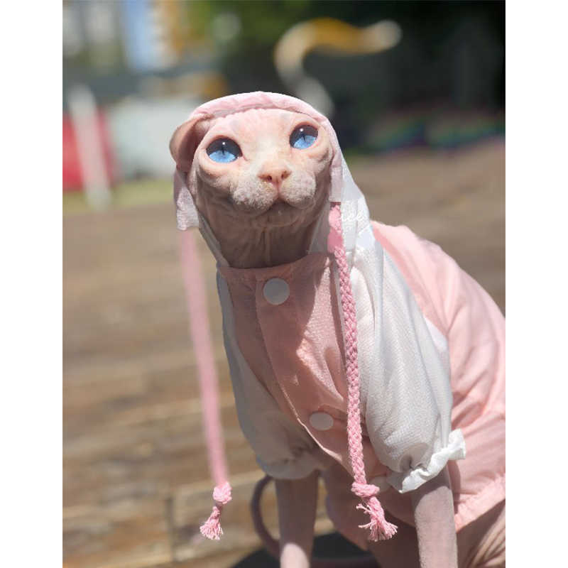 Sphinx hairless cat breathes out sunscreen clothes German cat pets summer waterproof raincoat air conditioning clothes costume