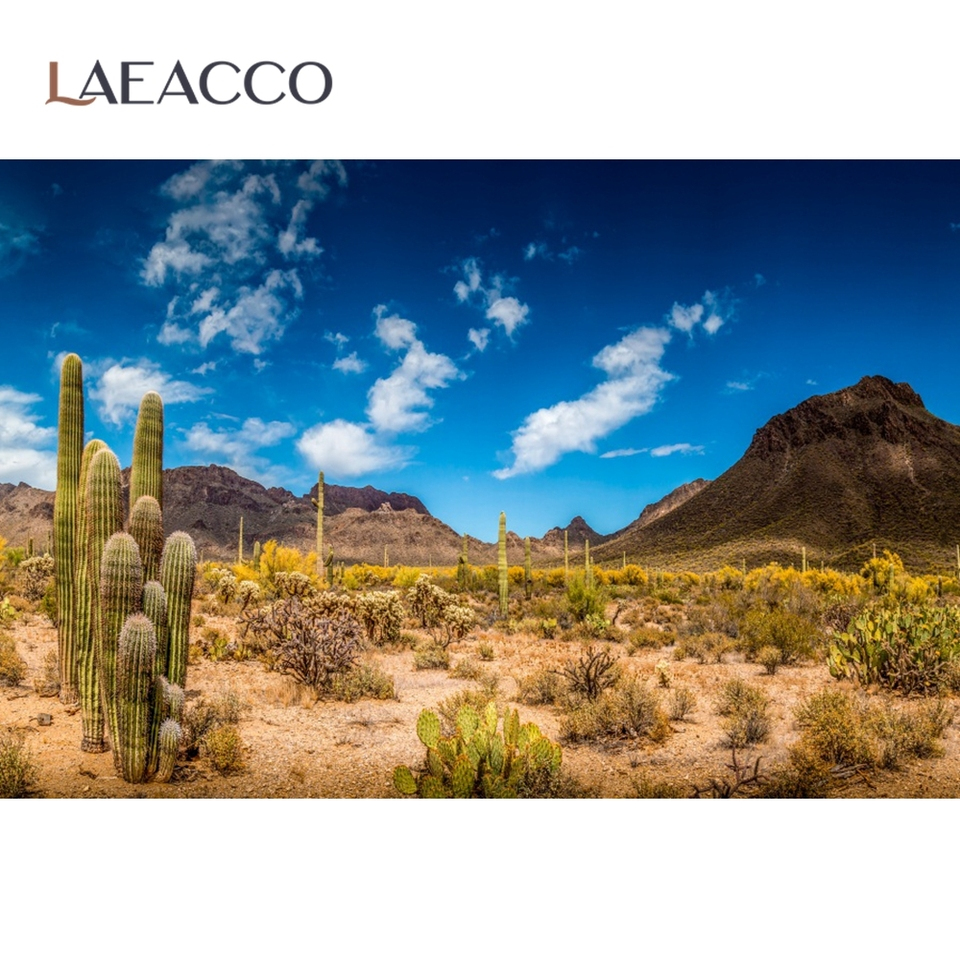 Laeacco Dusk Desert Cactuses Plants Scenic 15x10ft Vinyl Photography Background Sunset Desolate Place Scenery Backdrop Wedding Shoot Indoor Decors Landscape Wallpaper Studio