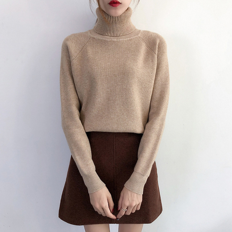 Leiouna Loose Solid Turtleneck Sweaters Autumn Office Lady Soft Sweater Women Pullovers 2020 Fashion Winter Sweater For Women