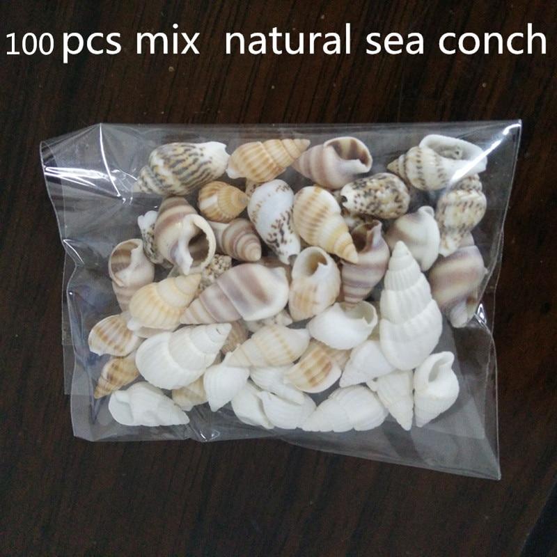 100pcs Beautiful Beach Mixed Sea Shell Real Sea Shell Mix Sea Shell Starfishes Shells Craft SeaShell Aquarium Decal Decor Crafts