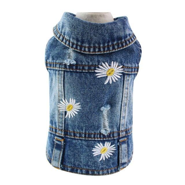 Fashion Jackets 6
