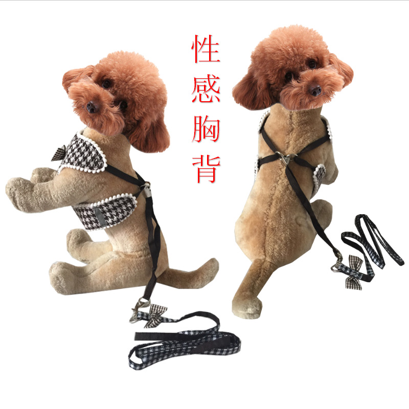 Export Pet Supplies Dog Chest And Back Delivery Hand Holding Rope Summer Sexy Chest Strap Thousands Of Birds Bow
