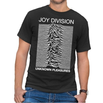 Unknown Pleasures Punk T-shirt