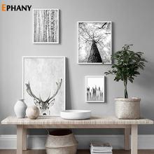 Природа Зимний лес скандинавский плакат черный белый пейзаж
