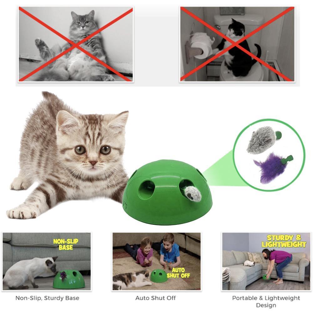 2019 New Cat Toy Pop Play font b Pet b font Toy Ball POP N PLAY