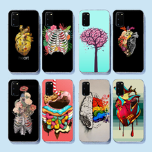 NBDRUICAI Medical Human Organs Brain Meridian Kidney Art Soft Silicone Phone Case for Samsung S9 plus S5 S6 S7 edge S8 S10 plus(China)
