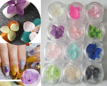 30 colors Nail Dried Flower Art Decoration Real Dry for 3D Manicure Polish Summer Preserved Floral ,GH147
