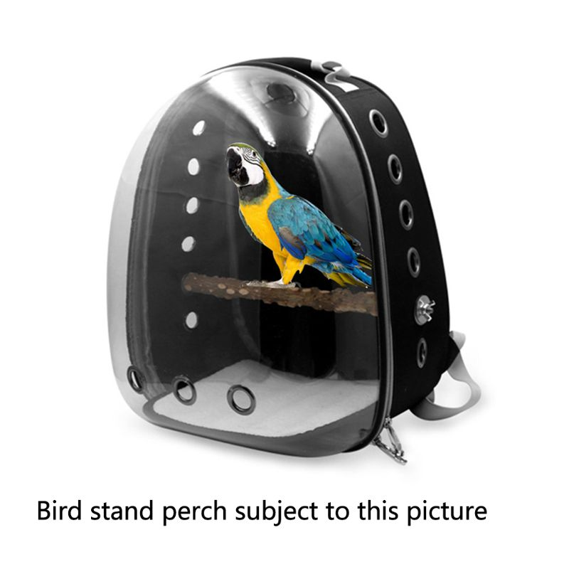 Pet Parrot Carrier Bird Travel Bag Space Capsule Transparent Backpack Breathable 360 degree Sightseeing JUL29