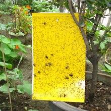 Juego de 20 unids/conjunto de doble cara, amarillo, pegamento de pegatinas de mosca,