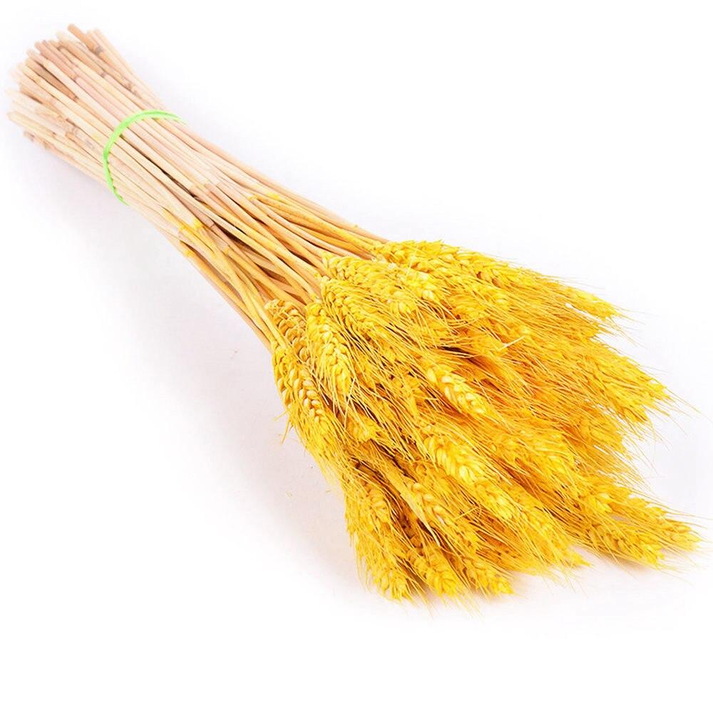 50Pcs-yellow