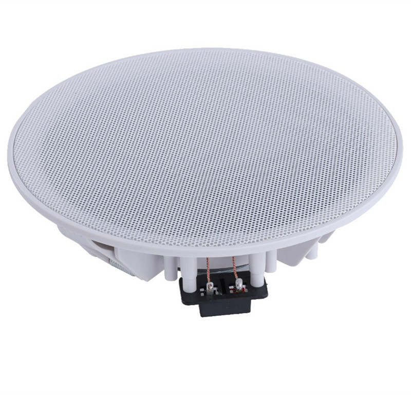 Ceiling Loudspeakers Background Music Ceiling Ceiling Loudspeakers Ceiling Loudspeakers In Hotel Rooms