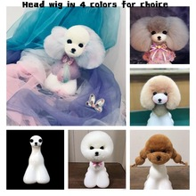 Teddy bear grooming model dog kit 10Pcs teddy bear head wig Get 1 free Head Mannequin