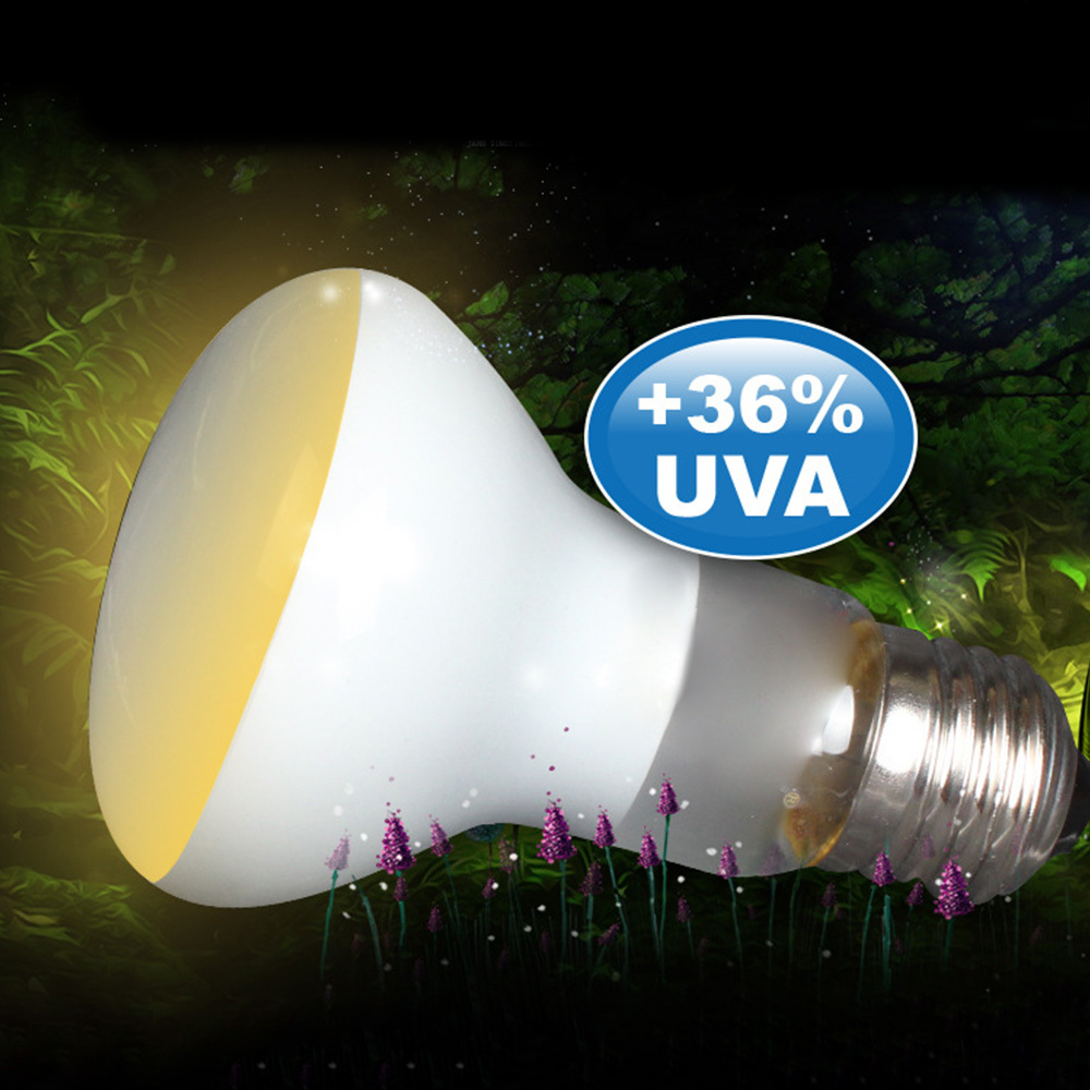2 Pcs 50w Spot Heat Lamps Soft White Glow Uva Glass Heat Lamp Bulb Light Reptile Pet Uva Lamp Fluorescent Lamp Sun Lamp Insulati