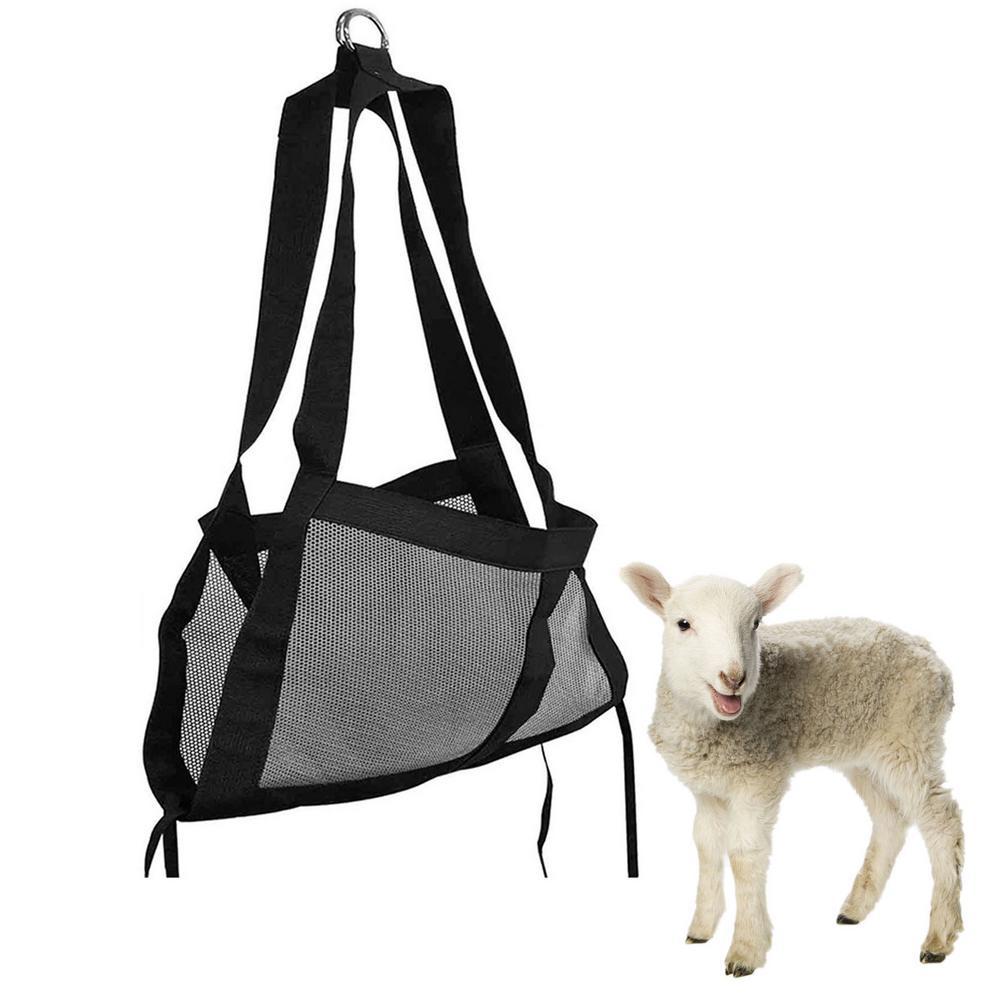 cordeiro bebê bezerro estilingue animais pesando eslinga de escala de peso