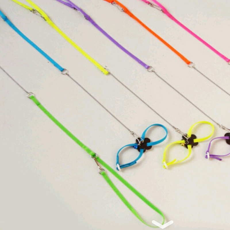 Let's Pet Colorful Parrot Bird Leash Outdoor Adjustable Harness Training Rope Flying Cross Band