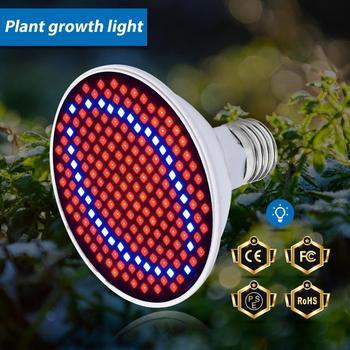 E27 lampa ledowa do hodowli roślin pełne spektrum E14 lampa do uprawy roślin GU10 lampa fito MR16 Fitolampy dla roślin nasiona kwiatów oświetlenie B22 2835 tanie i dobre opinie SPSCL CN (pochodzenie) ROHS PL003 47-120mm Plant Growth Light Żarówki led 85-265 v Rosną światła 2 Years 11cm China