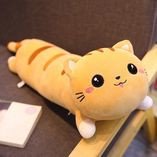 brown lying cat