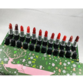 12 pçs/set Cosméticos conjunto de Maquiagem Batom Matte Lipgloss Natal rouge um levre compõem Batons 12 cores