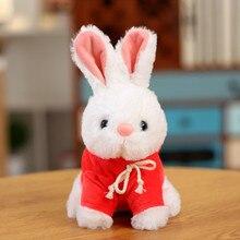 Simulation Bunny Birthday Gift