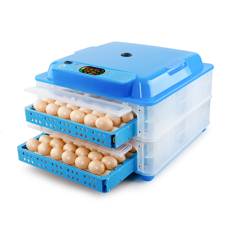 Large Capacity Automatic Egg Incubator China Dual Power Supply Incubadora Color Display Thermostat For  12V/220V