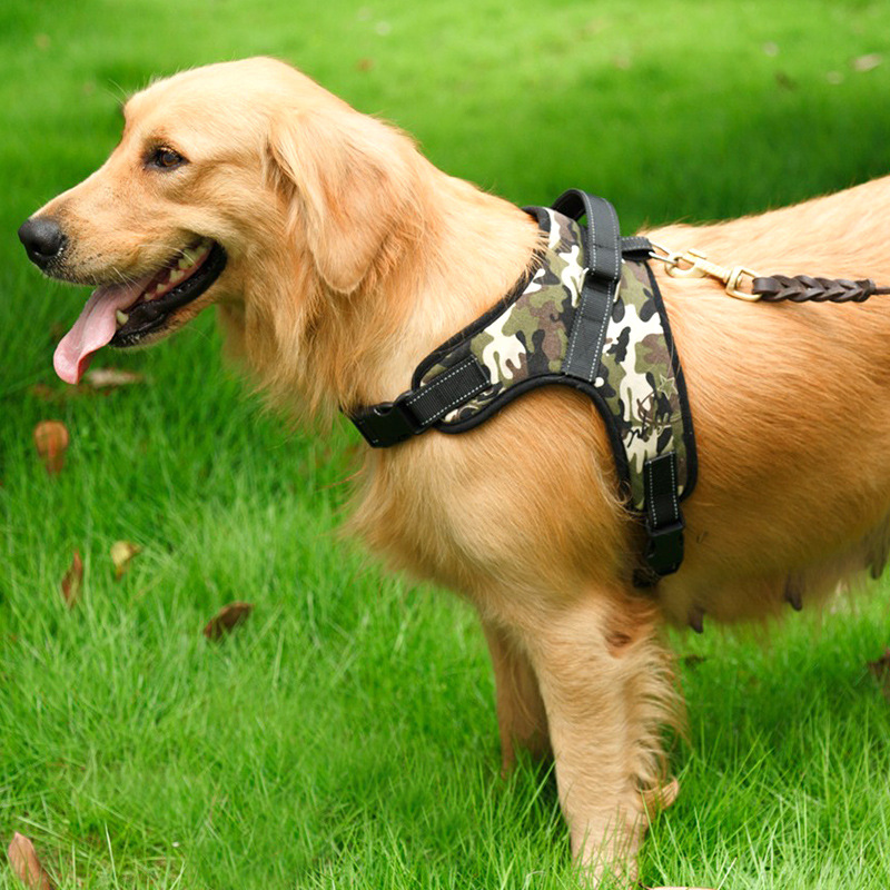 Dog Hand Holding Rope Chest Golden Retriever Dog Rope Dog Chain Medium Large Dog Suspender Strap Labrador Pet Supplies