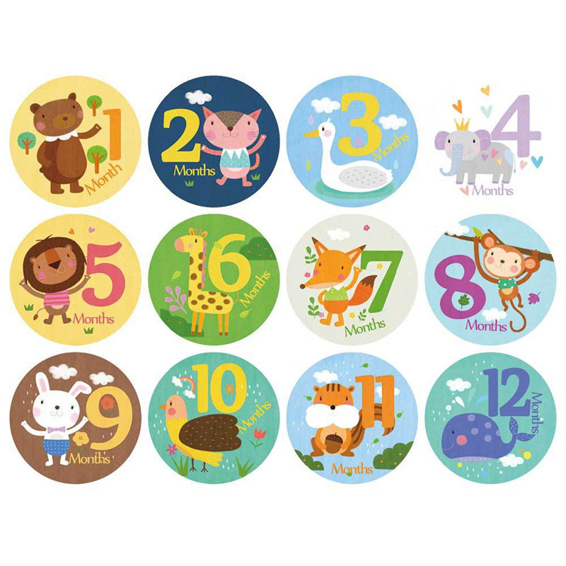 12 Pcs/Set Sheet Milestone Photo Sharing Cards 1-12 Months Baby Monthly Milestone Sticker Baby Photography Props Photo Stickers