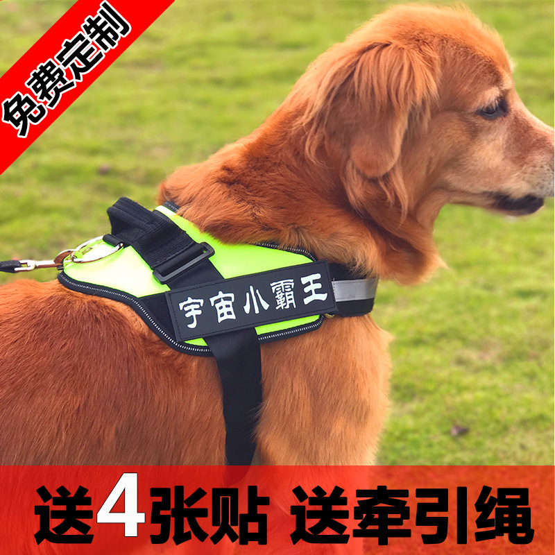 Dog Hand Holding Rope Medium Large Dogs Chest Golden Retriever Suspender Strap Labrador Dog Back Type Dog Rope Dog Chain