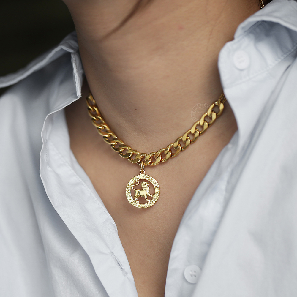 Choker <font><b>Necklace</b></font> For Women Girls <font><b>12</b></font> <font><b>Zodiac</b></font> <font><b>Sign</b></font> <font><b>Constellation</b></font> <font><b>Pendant</b></font> <font><b>Necklace</b></font> Stainless Steel Curb Rolo Link Chain 14inch DDN198 image