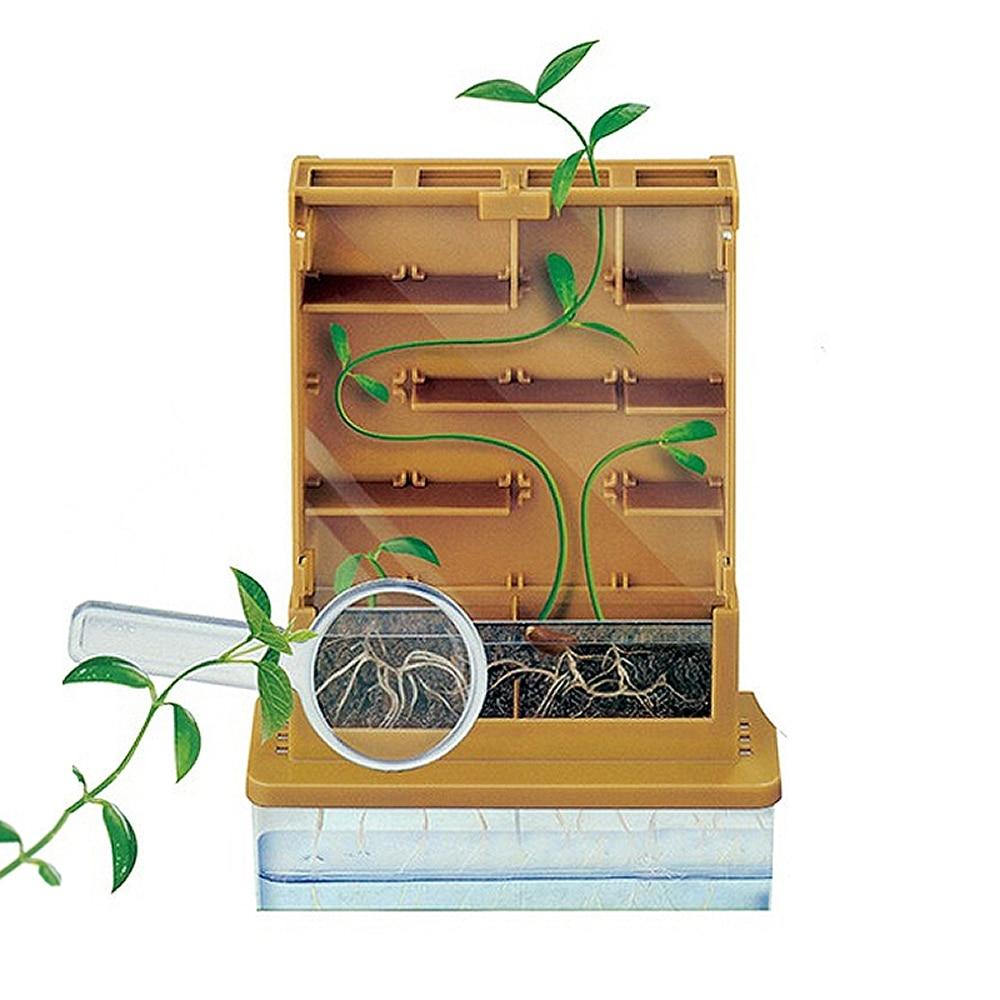 Дети наблюдают за ростом растений в фотосинтезе, научных исках во время обучения, научный эксперимент игрушки для изучения физики для детей