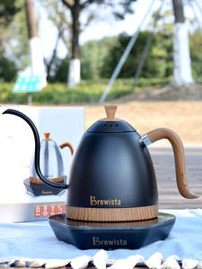 Tea-Kettle Coffee-Pot Gooseneck Brew Pour 220velectric Pot600ml Fine-Mouth