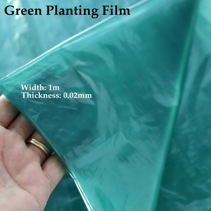 5~50m Width:1m Green Film Agricultural Greenhouse Vegetable Ginger Planting Mulch Grow Young Plants Care Sheeting