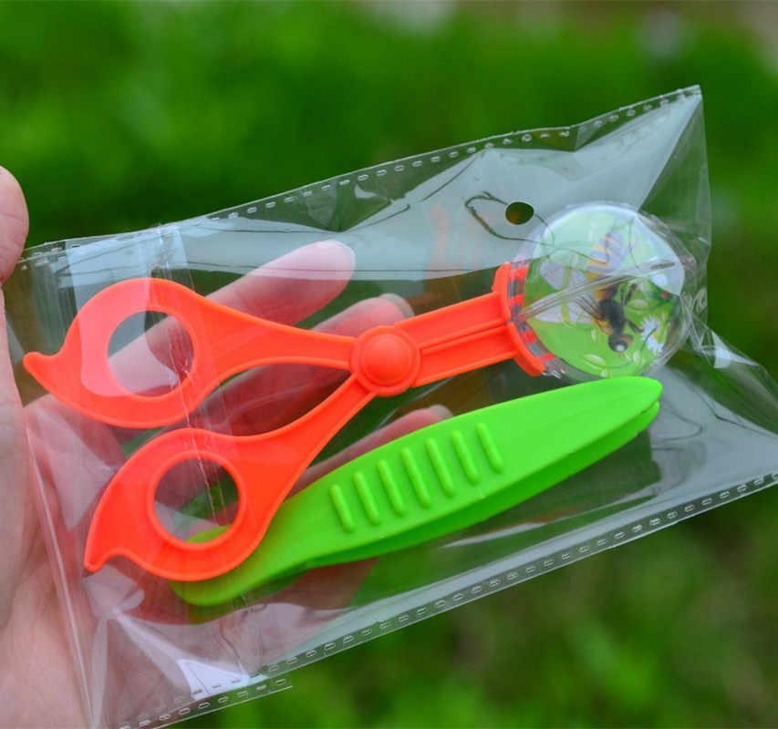 新しいかわいい自然探査のおもちゃ子供のための子供の学校の植物昆虫生物学研究ツールセットプラスチックはさみクランプピンセット