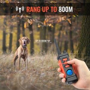 Image 2 - Ipets 616 mais novo 800 m recarregável e à prova drechargeable água vibração elétrica colar de choque para 3 cães