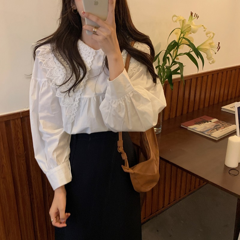 Hb227da180dc34eac8cf12056c5345a642 - Spring / Autumn Butterfly Lace Collar Long Sleeves Solid Blouse
