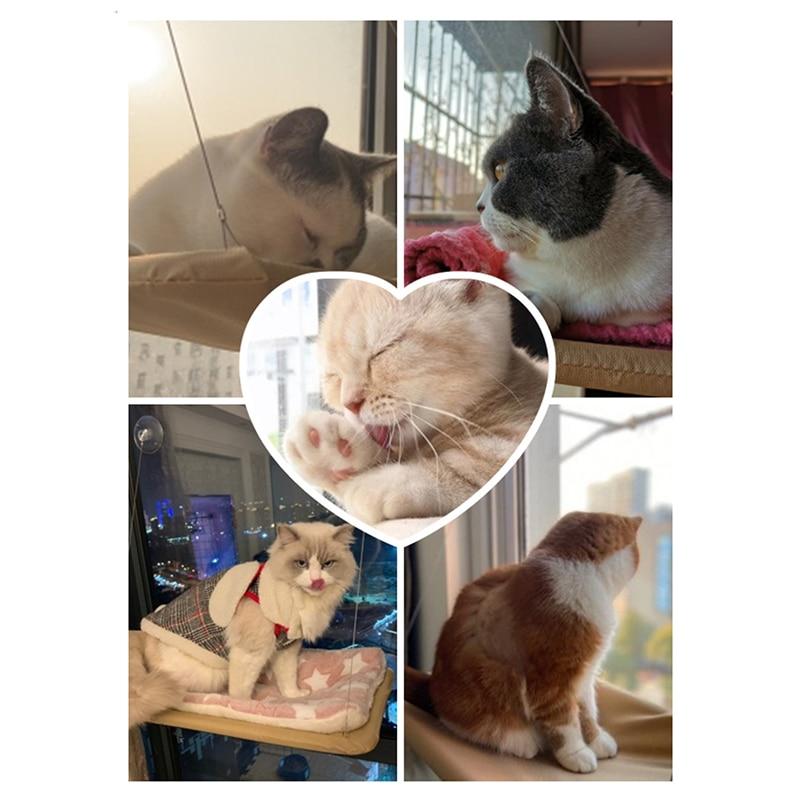 Cute Cat Hanging Beds Comfortable Sunny Seat Window Mount Pet Hammock Soft Pet Shelf Seat Beds Supplies Detachable Bearing 20kg 5