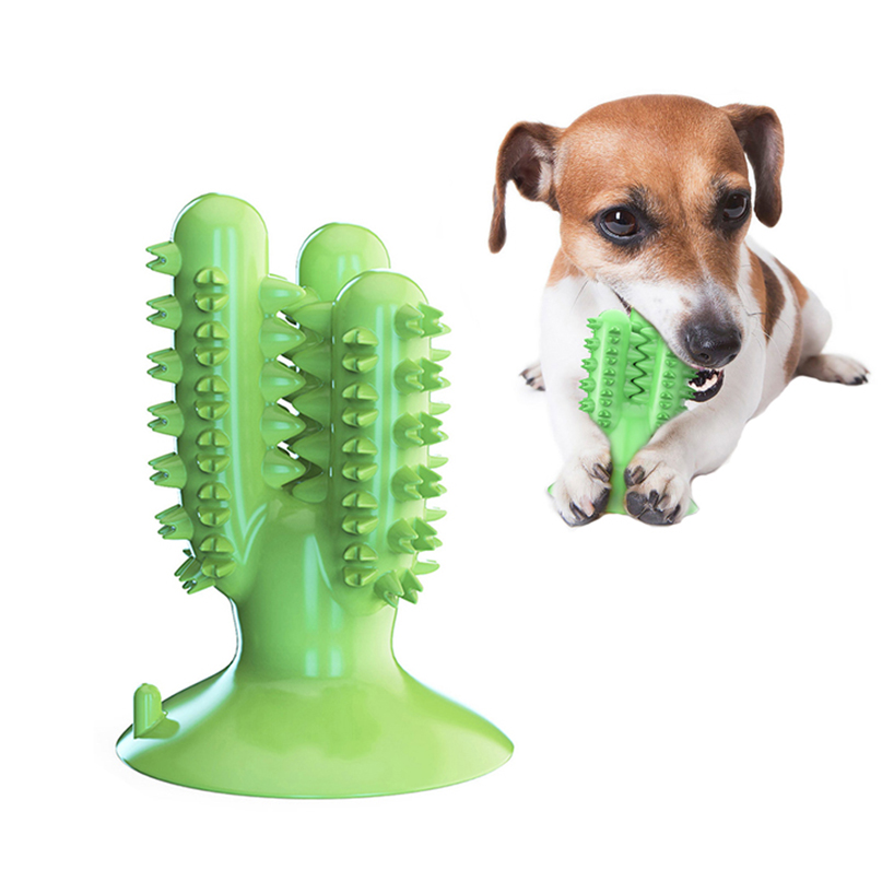 Dental Chew Toys for Dogs Healthy Fresh Puppy Teeth Cleaning Brush Cactus Large Breed Dog Molar Toothbrush Stick Pet Supplies image