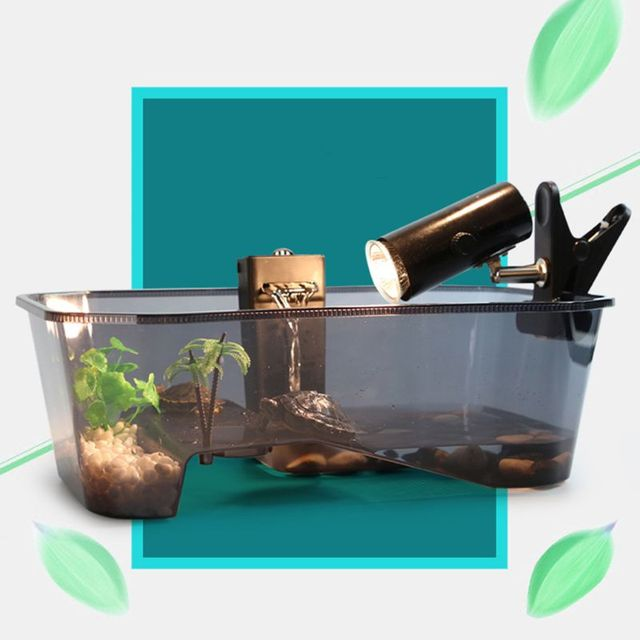 Reptile Vivarium Box For Turtles - Tortoise - Frogs - Amphibians with Basking Ramp  2
