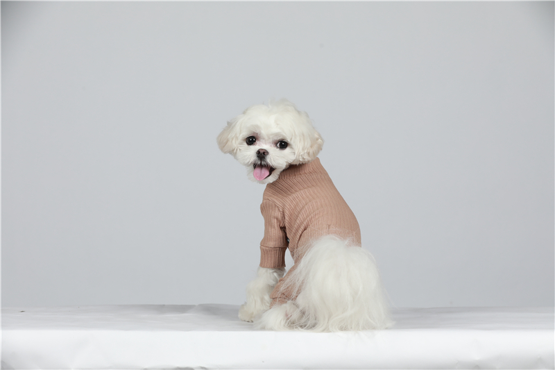 small puppy jumpsuit four legs (27)