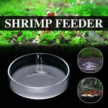 Bandeja de alimentação para aquário, recipiente redondo para alimentação de camarão e cristal, recipiente para comida