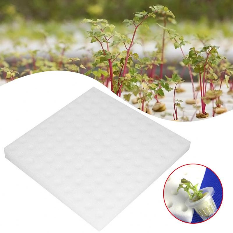 2019 100 Pcs Transplanted Sponge Soilless Hydroponic Vegetable Cultivation System Gardening Tools Seedlings For Planting