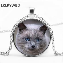 LKLRYWBD / Anime Jewelry Beauty Girl Atamis Cat Face Glass Stone Pendant Necklace Ear