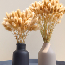Real Wheat Ear Flower Decoration Natural Pampas Rabbit Tail Grass Dried Flowers For Wedding