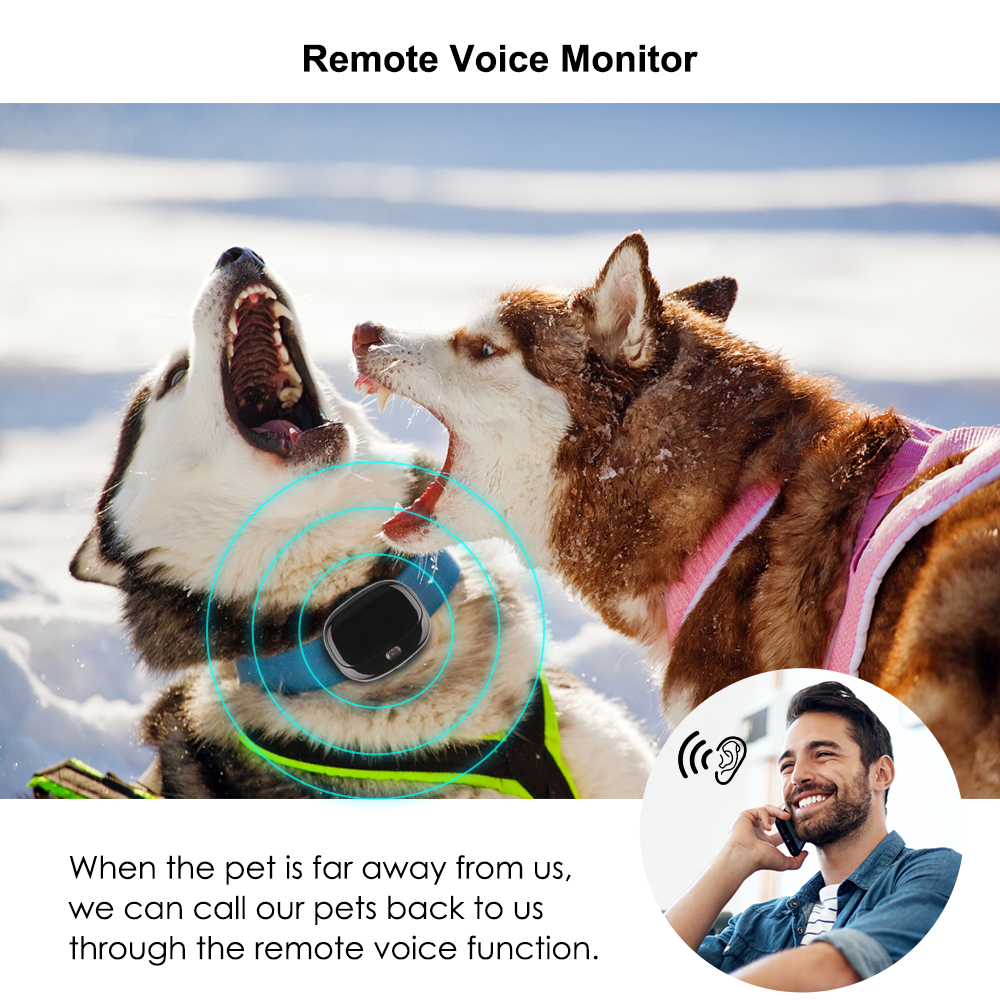 4G Dog GPS Pet Tracker Pet Dog Tracker Waterproof Voice Monitor Tracker Sports Step Real time