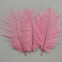 Ostrich-Feathers Wedding-Decoration Decor-Accessories Party Pink Hot for 10pcs 6-8-Inches/15-20cm