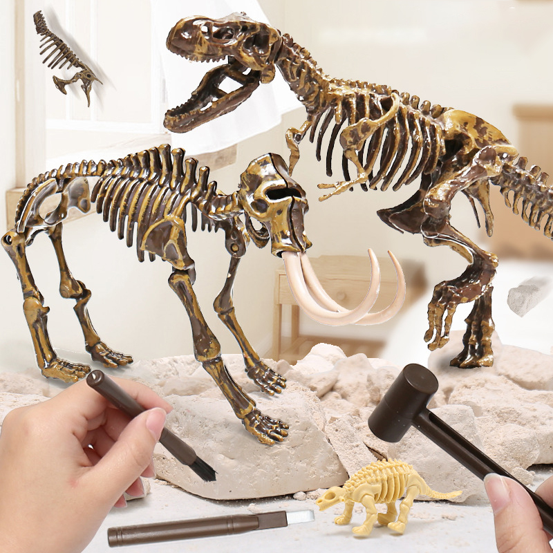 Simulation Dinosaur Toy History Learn Archeological Fossil Excavation Animal Skeleton Model Decoration Tyrannosaurus Toy For Boy