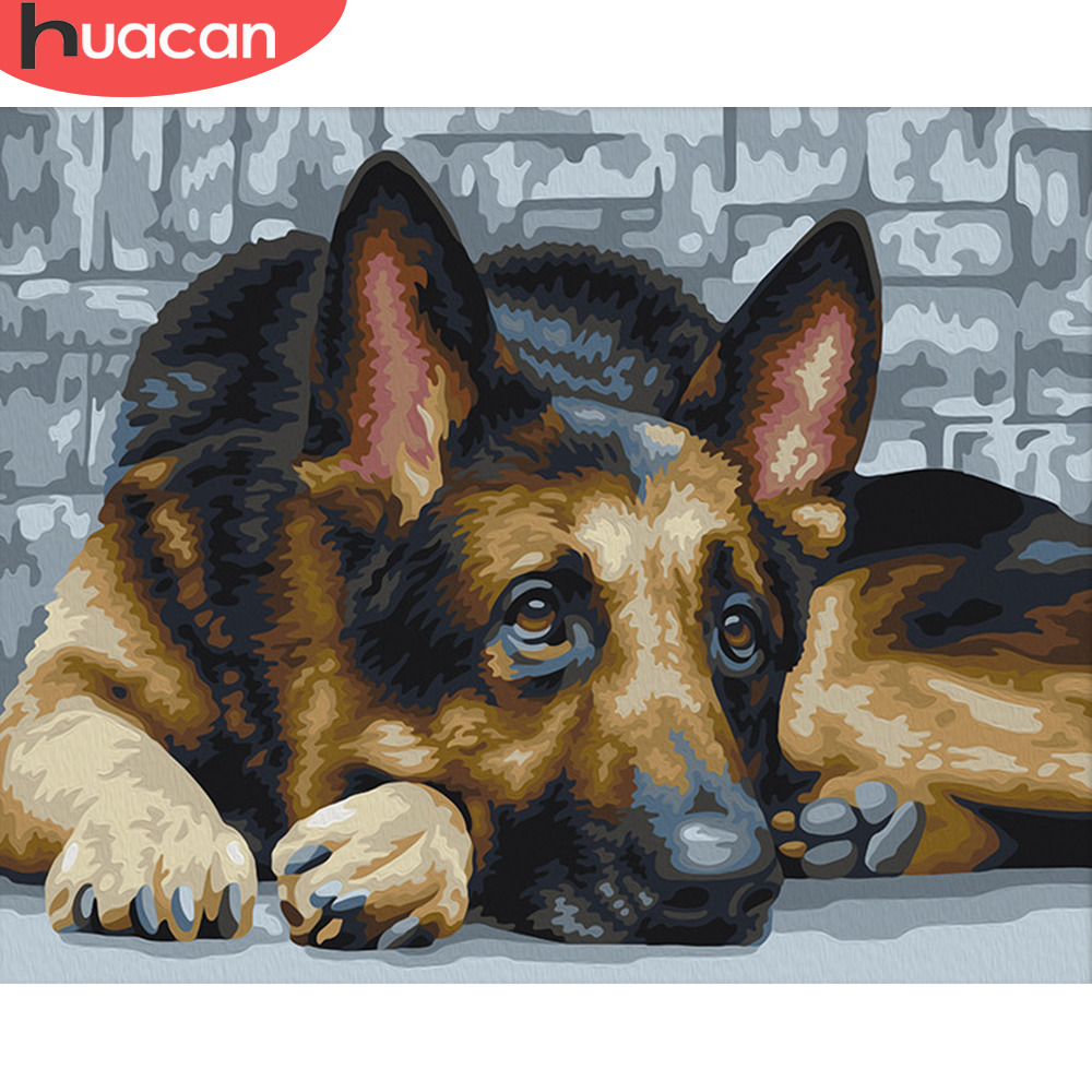 HUACAN Painting By Number Animal Dog Kits Drawing Canvas HandPainted Picture DIY Art Home Decoration Gift
