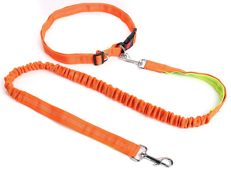 Dog Hand Holding Rope Buffer Running Of Belt Proof Punch Medium Large Dog Pet Supplies Dog With Lanyard