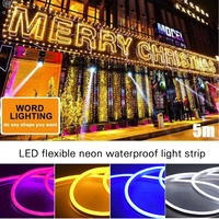 Silica Gel 12V LED Party Wedding Strip Light Lawn Car 120led Van Club Waterproof String Lamp 5M for Lights Neon Indoor
