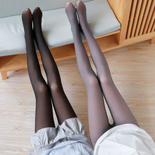 Seamless Legging Stockings Attendants Pantyhose Spring Fake Autumn Flight Gray And Real-Skin-All-In-One
