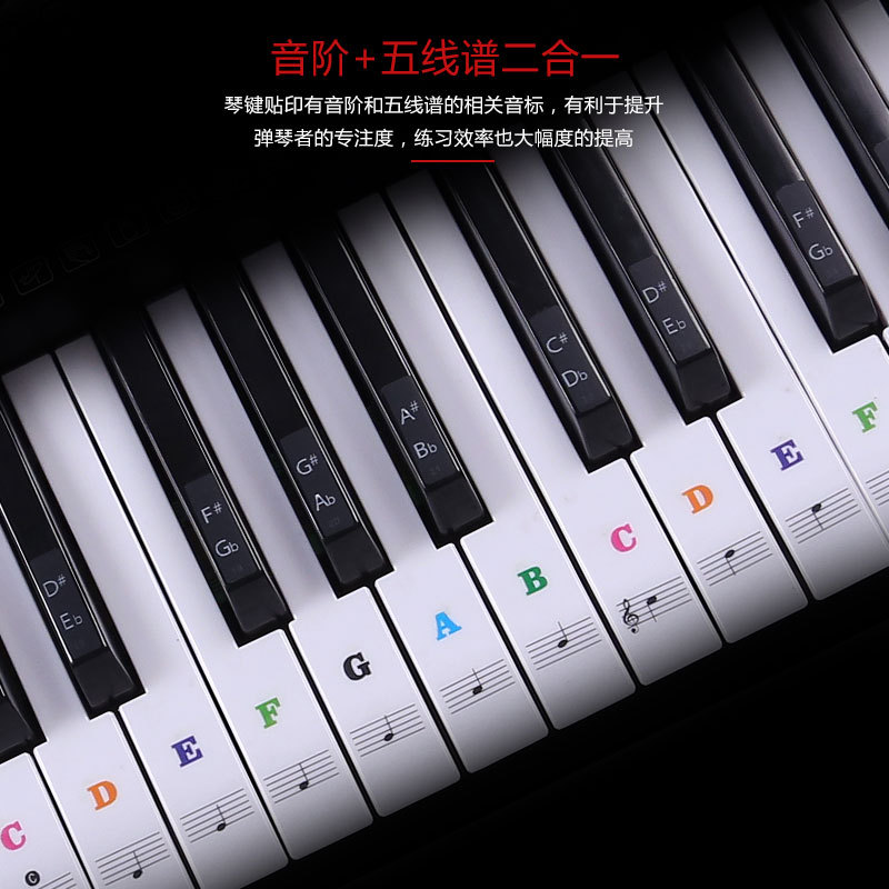 Transparent Piano Keyboard Sticker 49/54/61/88 Key Electronic Keyboard Piano Sticker Key Piano Stave Note Sticker for White Keys